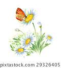 봄 꽃과 나비 29326405