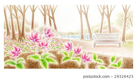 얼레지 꽃 29326425