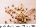 soybean, bean, beans 29329288