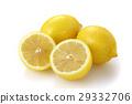 檸檬 水果 柑桔類 29332706