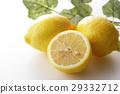 檸檬 水果 柑桔類 29332712