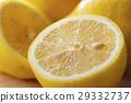 檸檬 水果 柑桔類 29332737
