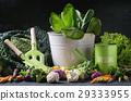 cabbage salad background 29333955
