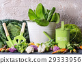 Green salads, cabbage, colorful veggies 29333956