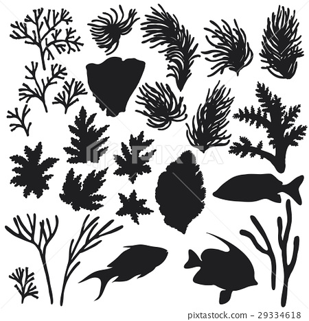 Reef Animals and Corals Silhouette Set 29334618