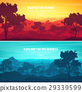 Mountains and forest. Wild nature landscape 29339599