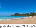 海滩 蓝色 蓝色的水 29349524