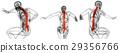 3d rendering medical illustration of human spine 29356766