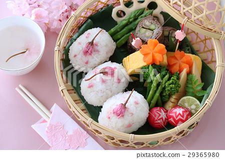 벚꽃 주먹밥의 꽃놀이 도시락 29365980