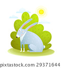 rabbit, forest, vector 29371644