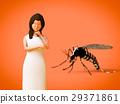 蚊子 女性 女 29371861