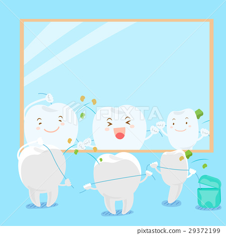 tooth clean body 29372199