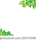 新的綠色框架 29373498