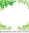 新的綠色框架 29373500