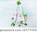 Dental hygiene concept. Toothbrushes, flowers mint 29377459