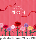 mothers day, mother's day, carnation 29379398