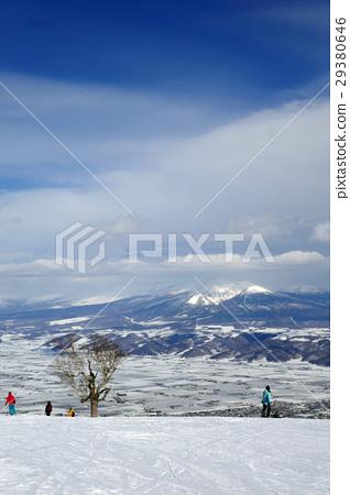 富良野滑雪勝地北區區域風景從山頂 29380646