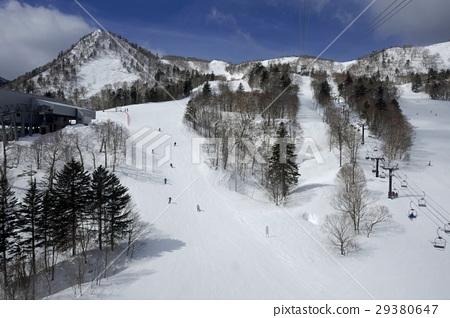 富良野滑雪勝地從索道看到的滑雪坡 29380647