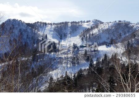 富良野滑雪勝地富良野地區被森林頂部包圍 29380655