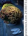 盆栽 灌注 花朵 29380731