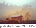 agriculture, country, forest 29381852