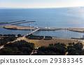 葛西临海公园 东京湾 贝类收集 29383345