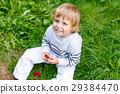 little kid boy picking fresh berries on organic 29384470
