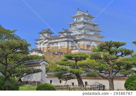 A fresh green Himeji castle 29386787
