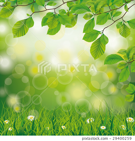 Easter Spring Beech Twigs Grass Daisy Flowers 29400259