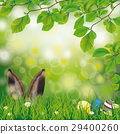 Easter Spring Hare Eggs Beech Twigs Flowers 29400260