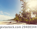 Tropical beach 29400344
