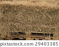 Hay bale on the pallet 29403385