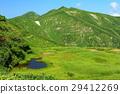 mountain, marsh, wetlands 29412269