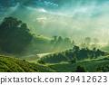 rays of the sun breaking through the fog  29412623
