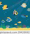 marine life collection2 29420092