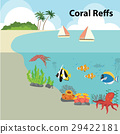 coral reef ecology 29422181
