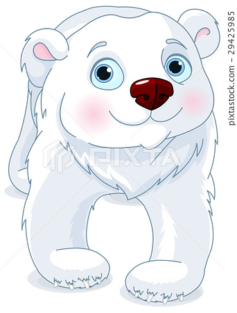 Polar Bear 29425985