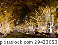 Illumination of the shopping area (Omotesando / Harajuku) 29433053