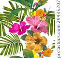 背景 開花 花朵 29435207