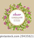 三叶草 花朵 花 29435621