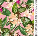 背景 開花 花朵 29437508