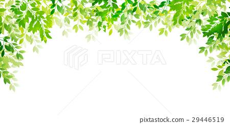 新的綠色葉子綠色背景 29446519