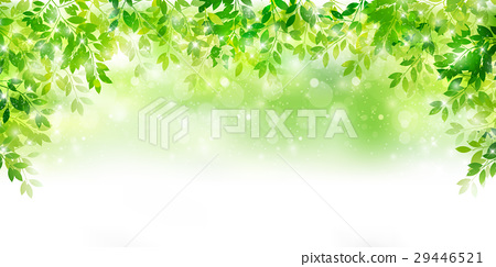 新的綠色葉子綠色背景 29446521