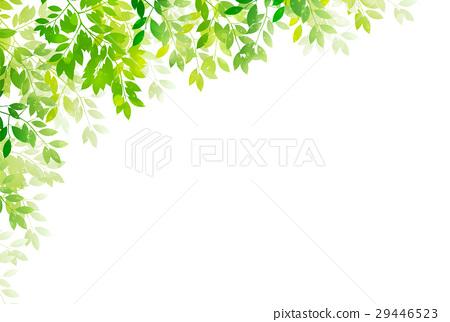 翠綠 鮮綠 葉子 29446523