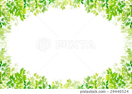 신록 잎 녹색 배경 29446524
