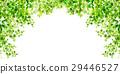 新的綠色葉子綠色背景 29446527