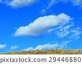 cloud, clouds, blue 29446880