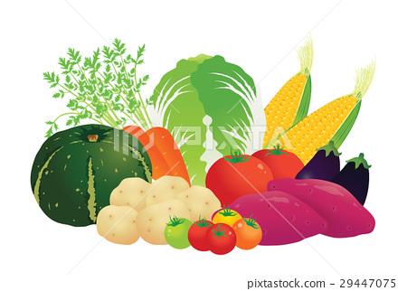 番茄 西紅柿 食品 29447075