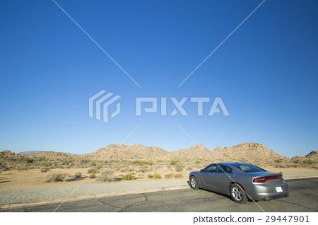 美国汽车和风景 29447901