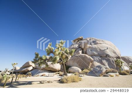 암벽 등반 29448019